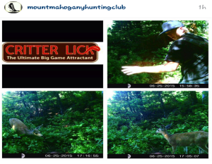 Mount Mahogany hunting club review
